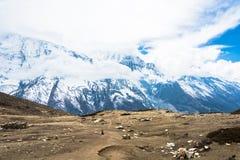 Ajardine com montanhas nevado, nuvens fechados, Nepal Fotografia de Stock