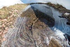 Ajardine com montanhas, neve e gelo nas árvores Imagens de Stock