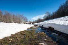 Ajardine com montanhas, neve e gelo nas árvores, Cerviati, I Imagens de Stock Royalty Free