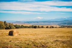Ajardine com montanhas, o céu azul e o campo Imagens de Stock Royalty Free