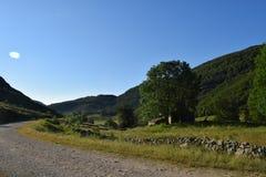 ajardine com montes e o céu verde do floresta e o azul Imagem de Stock Royalty Free