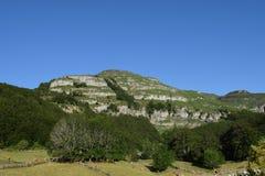 ajardine com montes e o céu verde do floresta e o azul Imagens de Stock Royalty Free