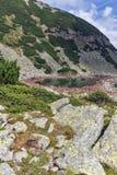 Ajardine com montes verdes e lagos Musalenski, montanha de Rila Imagem de Stock Royalty Free