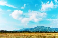 Ajardine com Mountain View, o céu azul e as nuvens bonitas Foto de Stock Royalty Free