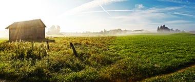 Ajardine com névoa Fotografia de Stock