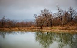 Ajardine com névoa enevoada da manhã em Forest Lake ou o lago bonito da floresta na manhã no tempo de inverno Natureza de Azerbai Imagem de Stock Royalty Free