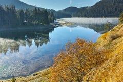 Ajardine com névoa sobre a água do reservatório de Golyam Beglik, Bulgária Imagem de Stock Royalty Free