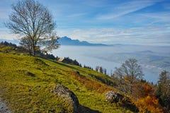 Ajardine com névoa sobre o lago Luzerne, cumes, Suíça Foto de Stock