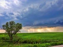 Ajardine com nuvem e feixes escuros do sol Foto de Stock