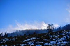 Ajardine com nuvens e névoa sobre os montes cobertos nas florestas dentro Imagens de Stock