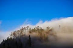 Ajardine com nuvens e névoa sobre os montes cobertos nas florestas dentro Foto de Stock