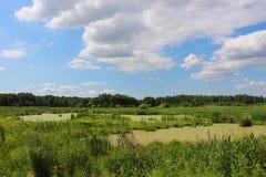 Ajardine com nuvens e o pântano/campo pitorescos/ Imagem de Stock Royalty Free