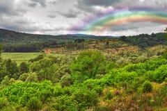 Ajardine com o arco-íris após a chuva Foto de Stock Royalty Free