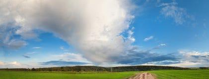 Ajardine com o céu azul profundo e campo verde Imagem de Stock
