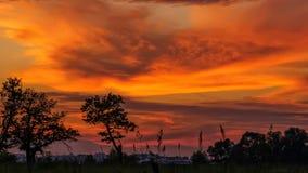 Ajardine com o céu nebuloso tormentoso alaranjado e amarelo da obscuridade - Foto de Stock
