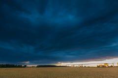 Ajardine com o céu tormentoso escuro sobre campos no crepúsculo Fotos de Stock Royalty Free