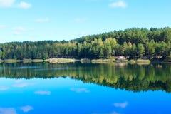 Ajardine com o lago com a floresta na inclinação Foto de Stock