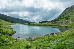 Ajardine com o lago da montanha sob as nuvens bonitas Fotos de Stock Royalty Free