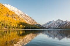 Ajardine com o lago em montanhas de Altai, Rússia Fotos de Stock Royalty Free