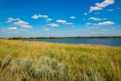 Ajardine com o lago em Rússia central no foco de August Front Imagens de Stock Royalty Free