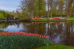 Ajardine com o lago pequeno em jardins holandeses de Keukenhof da mola Fotografia de Stock Royalty Free