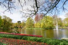 Ajardine com o lago pequeno em jardins holandeses de Keukenhof da mola nos Países Baixos Fotografia de Stock Royalty Free