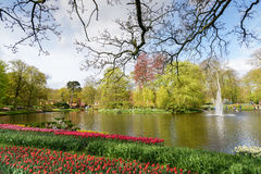 Ajardine com o lago pequeno em jardins holandeses de Keukenhof da mola nos Países Baixos Fotografia de Stock