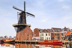 Ajardine com o moinho de vento, Haarlem, Holanda Foto de Stock Royalty Free