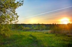 Ajardine com o nascer do sol sobre o prado e linhas do ai Imagem de Stock Royalty Free