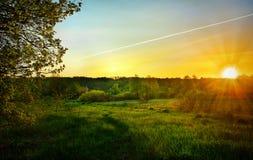 Ajardine com o nascer do sol sobre o prado e linhas do ai Foto de Stock Royalty Free