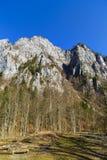 Ajardine com o parque nacional Buila de montanhas rochosas, Carpathians Imagem de Stock Royalty Free