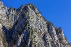 Ajardine com o parque nacional Buila de montanhas rochosas, Carpathians Fotografia de Stock Royalty Free