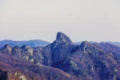 Ajardine com o parque nacional Buila de montanhas rochosas, Carpathians Imagens de Stock