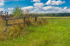 Ajardine com o prado na área rural, Poltavskaya Oblast, Ucrânia Imagem de Stock Royalty Free