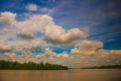 Ajardine com o Rio Amarelo e o céu azul com nuvens Malásia, Bornéu Imagens de Stock