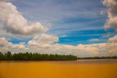 Ajardine com o Rio Amarelo e o céu azul com nuvens Malásia, Bornéu Imagem de Stock