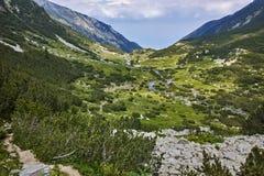 Ajardine com o rio com aguas potáveis, montanha de Pirin Fotos de Stock