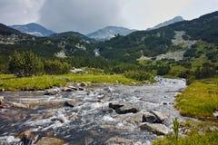 Ajardine com o rio com aguas potáveis, montanha de Pirin Imagem de Stock