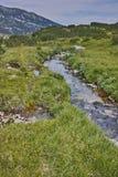 Ajardine com o rio da montanha perto do pico de Dzhano, montanha de Pirin Fotografia de Stock