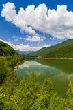 Ajardine com o rio de Olt em Romênia cercou pela floresta e pelo MOU Fotos de Stock Royalty Free