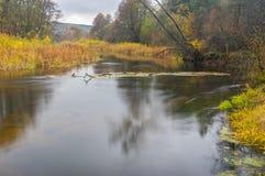 Ajardine com o rio de Vorskla no oblast de Sumskaya, Ucrânia Imagem de Stock