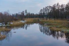 Ajardine com o rio do ` de Hrun no oblast de Poltavskaya, Ucrânia Imagem de Stock