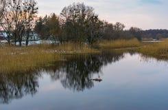 Ajardine com o rio do ` de Hrun perto da vila de Krasna Luka no oblast de Poltavskaya, Ucrânia Imagem de Stock