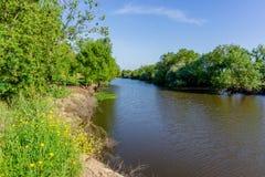 Ajardine com o rio e a vegetação verde das árvores e plante Foto de Stock