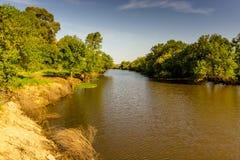 Ajardine com o rio e a vegetação verde das árvores e plante Imagem de Stock Royalty Free