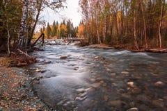 Ajardine com o rio nas montanhas de Altai, Rússia Fotografia de Stock