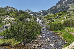Ajardine com o rio perto do pico de Sivrya, montanha de Pirin Imagem de Stock Royalty Free