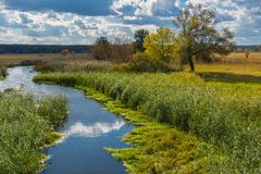 Ajardine com o rio ucraniano pequeno Merla situado na região de Poltavsk Imagens de Stock