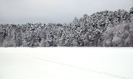 Ajardine com o trajeto coberto de neve na borda da floresta e do rio congelado em um dia de inverno nebuloso Fotografia de Stock