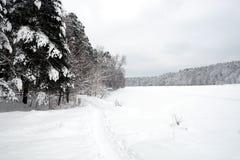 Ajardine com o trajeto coberto de neve na borda da floresta e do rio congelado em um dia de inverno nebuloso Foto de Stock Royalty Free